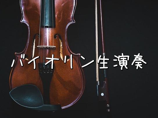 オリジナル楽曲「step forward」、メインのバイオリンをISSAKUさんに弾いていただきました